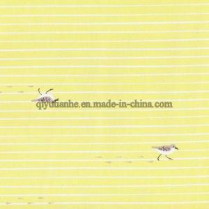 Organic Cotton Fabric (028) Manufactures