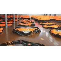 reversible open type inflatable life raft Manufactures