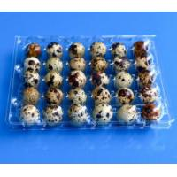 China Disposable plastic quail egg tray 30 holes quail egg tray plastic egg tray for quail eggs 30 slots on sale