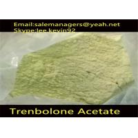Yellow Trenbolone Powder Cas 10161-34-9 Steroid Raw Powders For Building Muscle