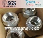 SW Union forged fitting