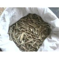 Olive Leaf Extract Oleuropein Manufactures