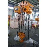 High Quality 10 Ton Electric Chain Hoist (SSDHL05-02) Manufactures