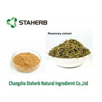 Quality Rosmarinus Officinalis L Rosemary Leaf Extract , Rosemary Antioxidant Extract for sale