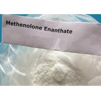 Primobolan Muscle Building Methenolone Enanthate Strongest Steroids Powder Body Shape Manufactures