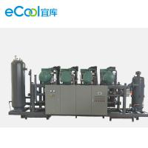Single Compressor Refrigeration Capacity 125HP 6pcs Bizter Screw parallel Compressor Unit for Food Processing Cold Room Manufactures