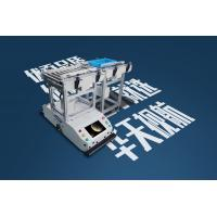 New Technical Fast Speed Warehouse Robot Trackless Slam Lifting Backup Agv Manufactures