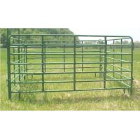 horse panels Manufactures