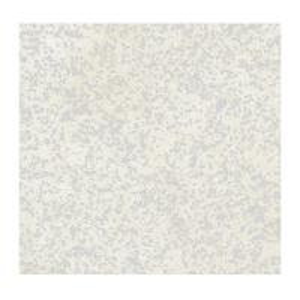 Interior decoration materials Artifical quartz  Italiana stone best quality  Platino polished color 305*143*2CM Manufactures