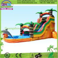 China New Inflatable Slide for Kids with Outdoor Slide on sale