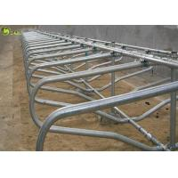 Quality Hot Dip Galvanized Cow Free Stall Cattle Steel Pipe Cubicles Separate Cow Stalls for sale