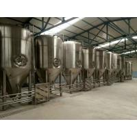 Full Turnkey Large Beer Brewing Equipment Full Automation PLC Control System Manufactures