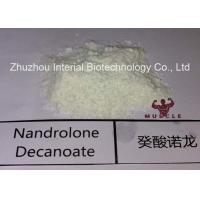 Injectable Nandrolone Decanoate Steroid White Powder Deca for Muscle Gaining with Safe Shipping Manufactures