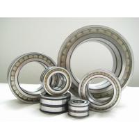 Stable Precision Cylinderical Roller Bearing with ISO Certificated NJ2204E Manufactures