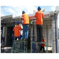 Building Wall Suspended Slab Formwork Steel Formwork System Easy Operation
