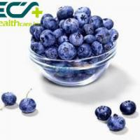 China Herbal Skin Care Supplements Organic Freeze Dried Blueberry Powder Prevent Cancer on sale