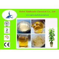 Trenbolone Enanthate Muscle Building Steroids Raw Steroid Powders 10161-33-8 Manufactures