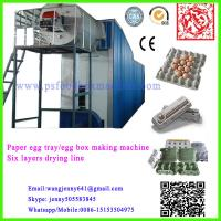 China paper pulp molding egg tray machinery on sale