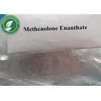 CAS 303-42-4 White Steroid Powder Methenolone Enanthate For Muscle Growth Manufactures