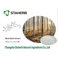 Quality Betulinic Acid Birch Bark Extract , Herbal Reference Standards Antitumor for sale