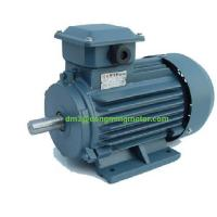 Y2 Series three-phsae induction motor Manufactures