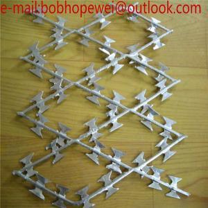 welded razor wire mesh/Blade concertina razor barbed wire export to American/galvanized welded razor barbed wire Manufactures