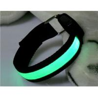Green Plain Webbing LED Flashing Pet Leads Manufactures