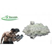 Raw Powder Sildenafil Citrate Sex Steroid Hormones for Men Muscle Building Manufactures