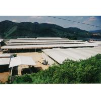 China Temporary Agricultural Steel Frame Buildings , Light Heavy  Multi Storey Steel Structure Building on sale