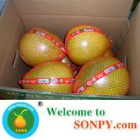 China Grapefruit Pomelo Manufactures