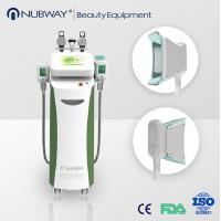 China 5in1 Portable Home Cryolipolysis Fat Freeze Cryo Slimming Machine for sale on sale