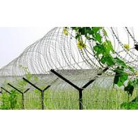 Powder Coating Surface Stainless Steel Razor Wire , Razor Ribbon Wire BTO-10 15 22 Manufactures