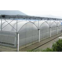 China Multi Span Polyethylene Plastic Sheeting Greenhouse Arched Roof Top Height 4.0-8.0m on sale