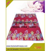 China thin firm natural and environment friendly coconut fiber coir pad mattress on sale