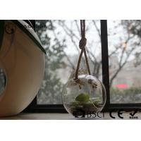 Clear Glass Hanging Terrarium / Hanging Glass Plant Holders Anti Corrosion Manufactures