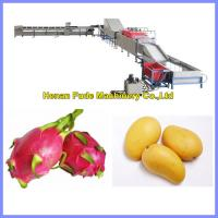 Fruit Cleaning, Waxing, Drying and Grading Production Line Manufactures
