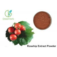 Quality Water Extracted Organic Rosehip Extract Powder Rosa Rugosa Thunb L for sale