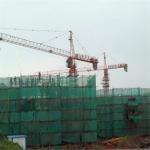 Capacity 6tons Qtz100 (TC6510C-6) Building Construction Tower Crane Manufactures