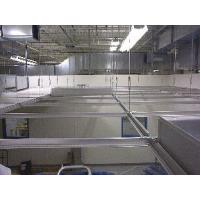 Aluminum Black Grooved Ceiling Tee Grid Manufactures