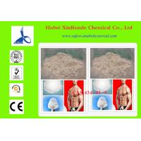 Anti Aging Steroid Cutting Cycle Methenolone Acetate Primobolan 434-05-9 Manufactures