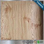Decoration Wood Grain Aluminum Composite Panel Thickness 3mm ~ 6mm Paint Coat Surface Manufactures
