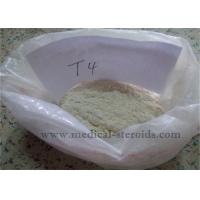 Weight Loss Steroids T4 L-Thyroxine Sodium Salt For Muscle Growth Manufactures