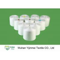 40s /2 50s /2 60s /2 Double Twist Raw White Staple Fiber 100% Polyester Yarn for Sewing Thread Manufactures