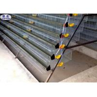 Automatic Quail Egg Laying Cages Battery Operated Design Customized Size Manufactures
