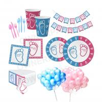 Cute Kids Party Decorations , Gender Reveal Disposable Party Tableware Manufactures