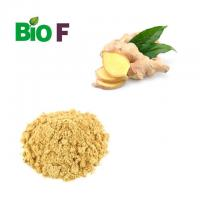 Healthy Vegetable Extract Powder Yellow Ginger Extract Powder Gingerol 5% Manufactures