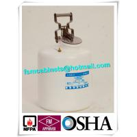Steel 5 Gallon Chemical Safety Cans For Flammable Liquids Storage Manufactures