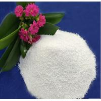 China Soda Ash Substitute (1 : 10 times stronger of Soda Ash) on sale