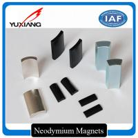 Rare Earth Motor Custom Made Magnets Arc NdFeb Magnets For Cleaning Machine Manufactures