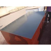 black film faced plywood Manufactures